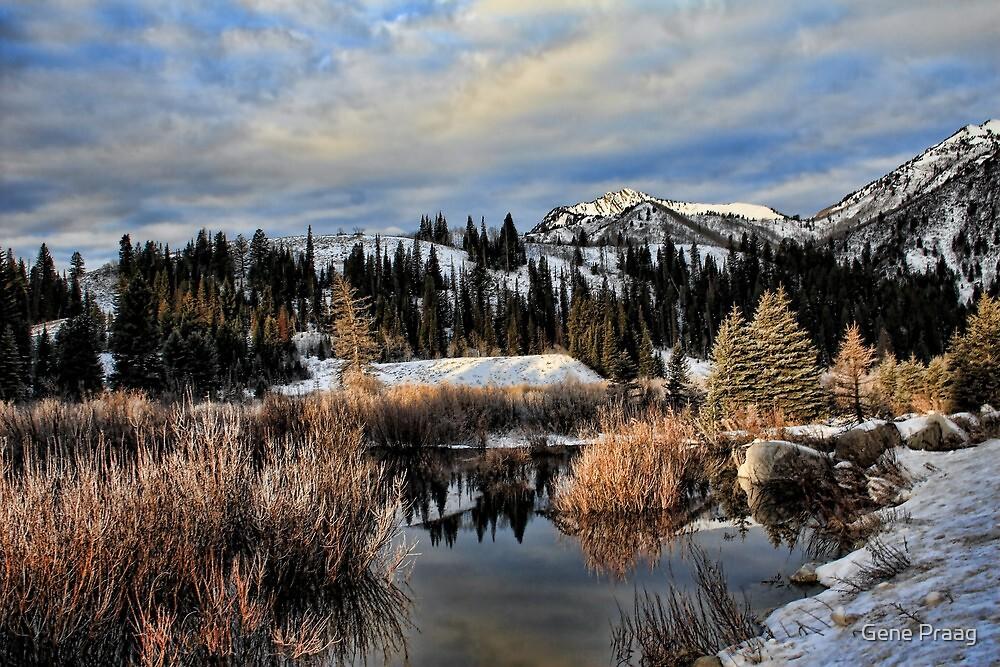 Winter Paradise by Gene Praag