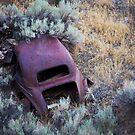 Auto Dump by pmreed