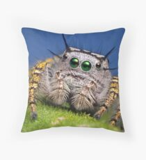 """Phidippus mystaceus"" Jumping Spider Macro Throw Pillow"