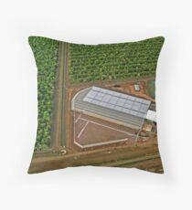 Tree Farm Throw Pillow