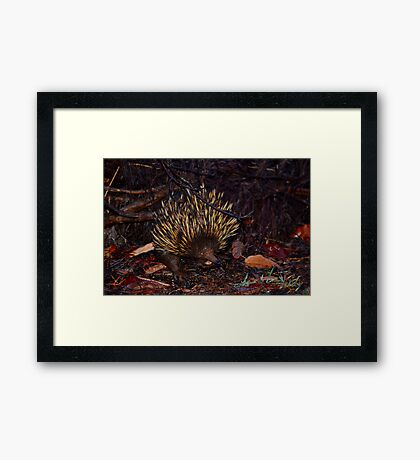 Is this my good side? Framed Print