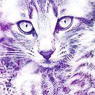 Watercolor Cat by jordygraph