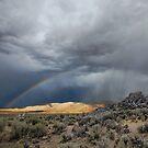 High Desert Monsoons by SB  Sullivan