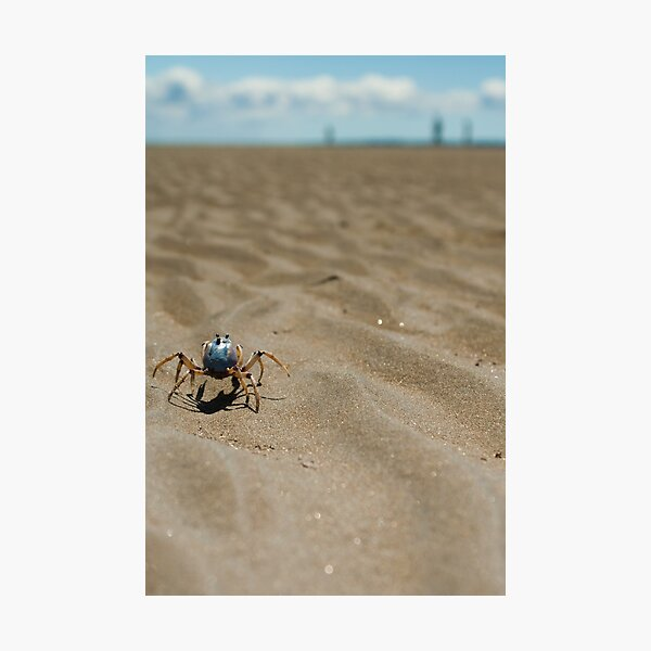 One Fine Soldier Photographic Print