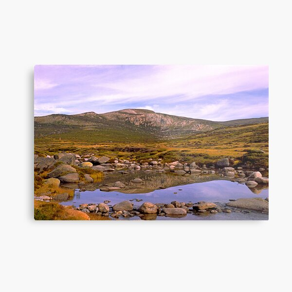 Snowy River, Charlotte Pass, Snowy Mountains, Australia Metal Print