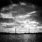 Toy-Lens & Toy-Camera 21 by BKSPicture
