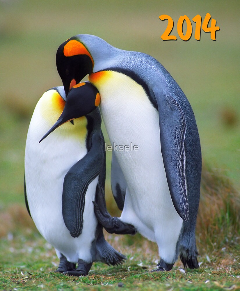 Two penguins in love by leksele