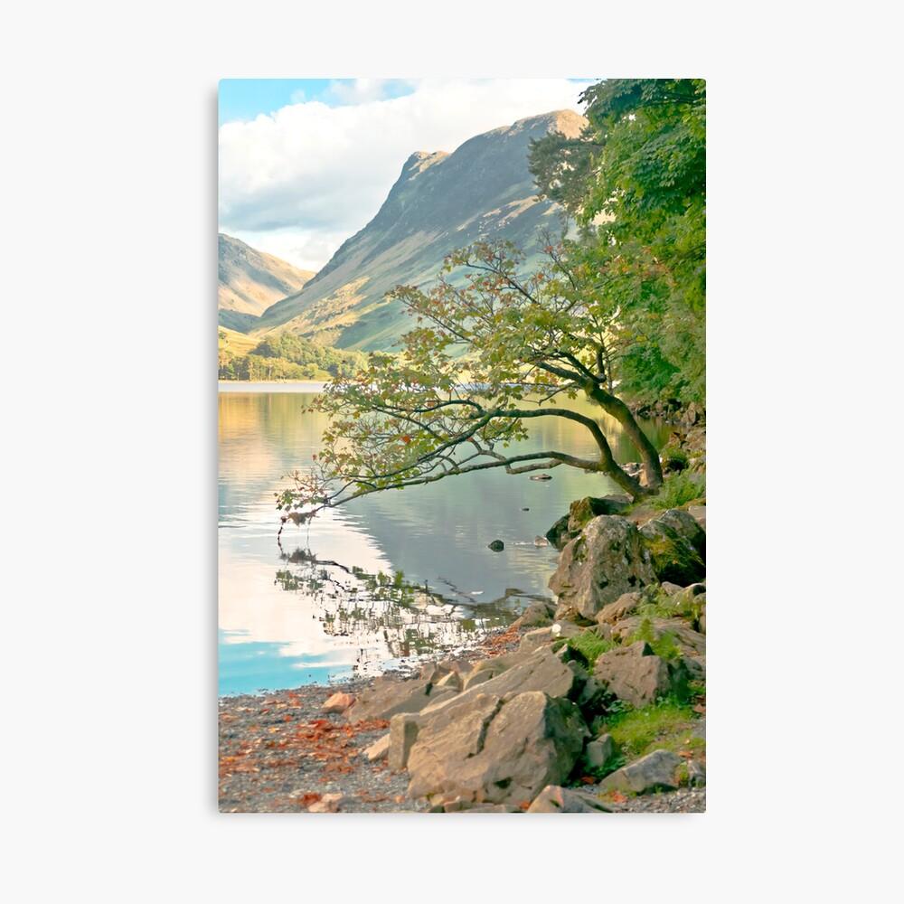 The Kissing Tree Canvas Print