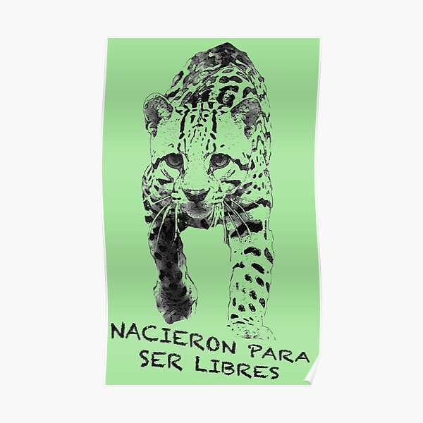 Ocelot: Born to be Free Poster