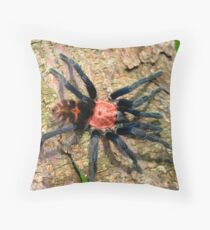 Tiger Rump Doppel Ganger Tarantula Throw Pillow