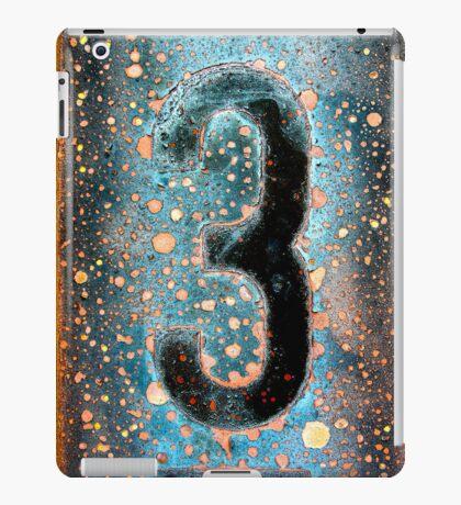 3 iPad Case/Skin