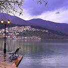 Kastoria Town near lake. (Greece) by Tania Koleska