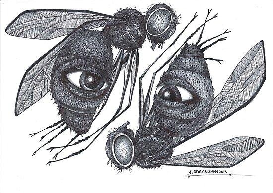Psychic Fly's von Justin Chapman