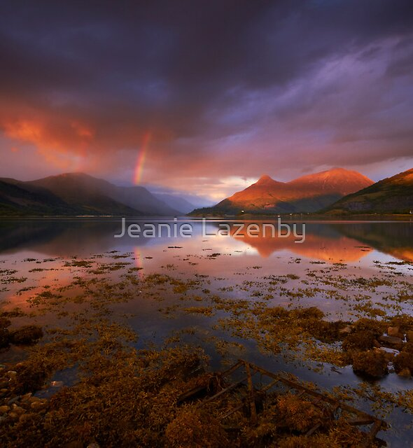 Chasing the Light by Jeanie