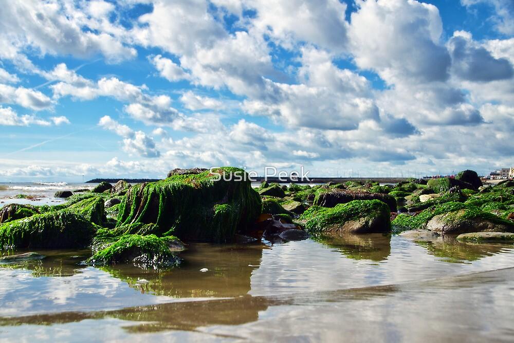 Low Tide At Lyme Regis by Susie Peek