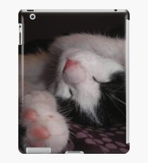 Cat 1 iPad iPad Case/Skin