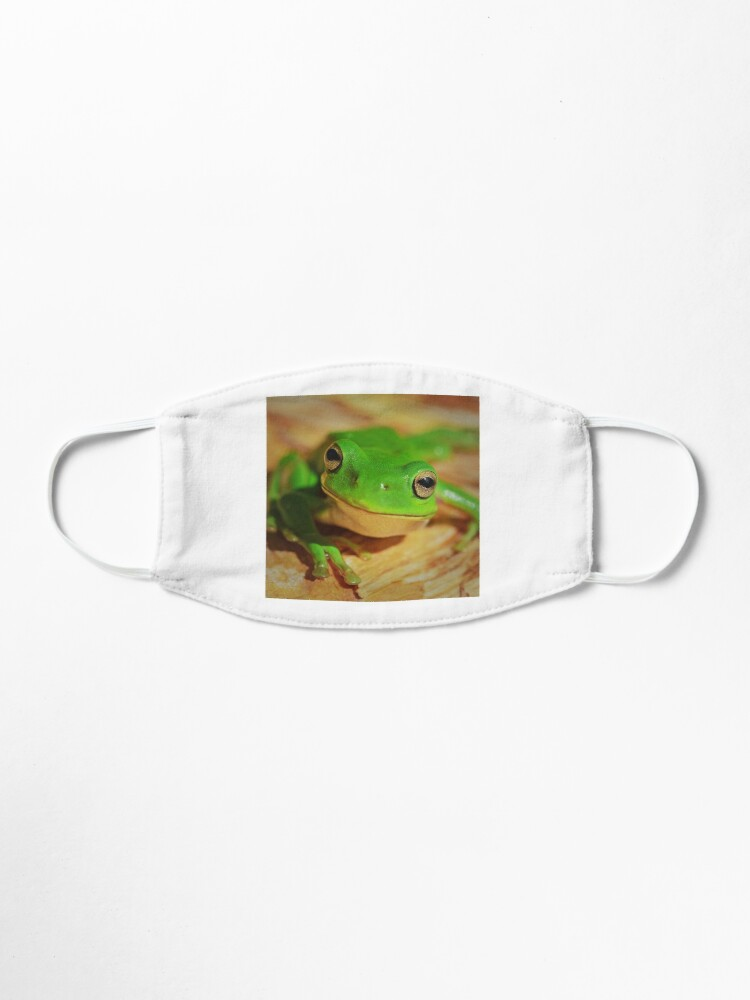 Alternate view of Frog Mask Mask
