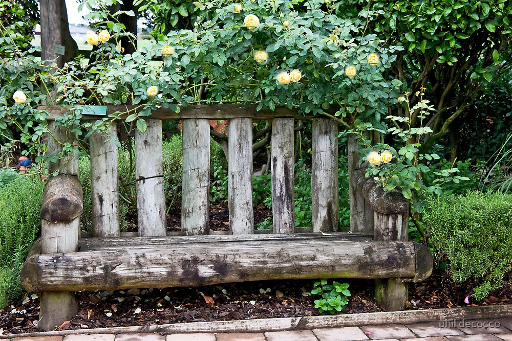 Yellow Rose Bench by phil decocco