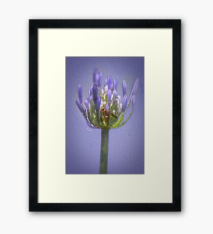 Yellow Jacket Rest Stop Framed Print