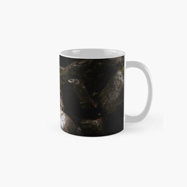 Moody Waterfall Classic Mug