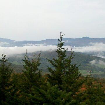 Foggy Morning by Rystall
