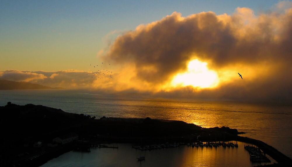 Harbor Sunrise Below The Golden Gate by David Denny