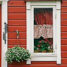 Red Wooden House With Plants by printscapes