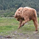Doing The Highland Fling by Carla Maloco