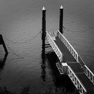MONA, Hobart by Jack Wright