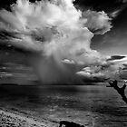 thunder gods by james smith