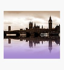 Westminster Lilac Photographic Print