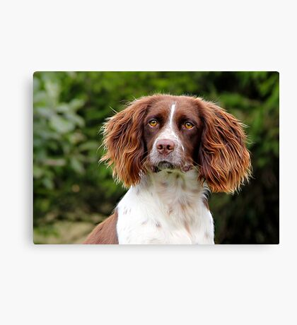 Just had my hair done! Canvas Print