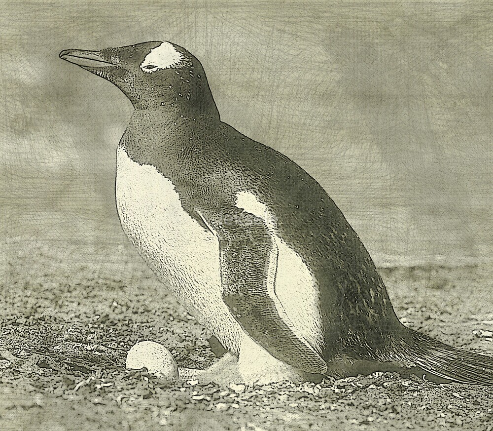 Penguin drawing by leksele