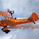 Breitling Wingwalking Team's Stearman by Stuart Robertson Reynolds