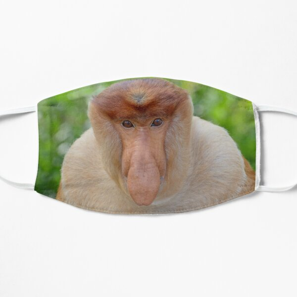 Proboscis Monkey - Nasalis larvatus Mask