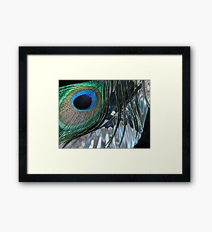 Eye Of A Feather Framed Print