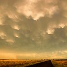 After the Storm passes by Rodney Wallbridge