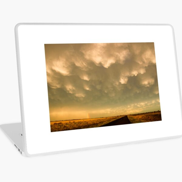 After the Storm passes Laptop Skin