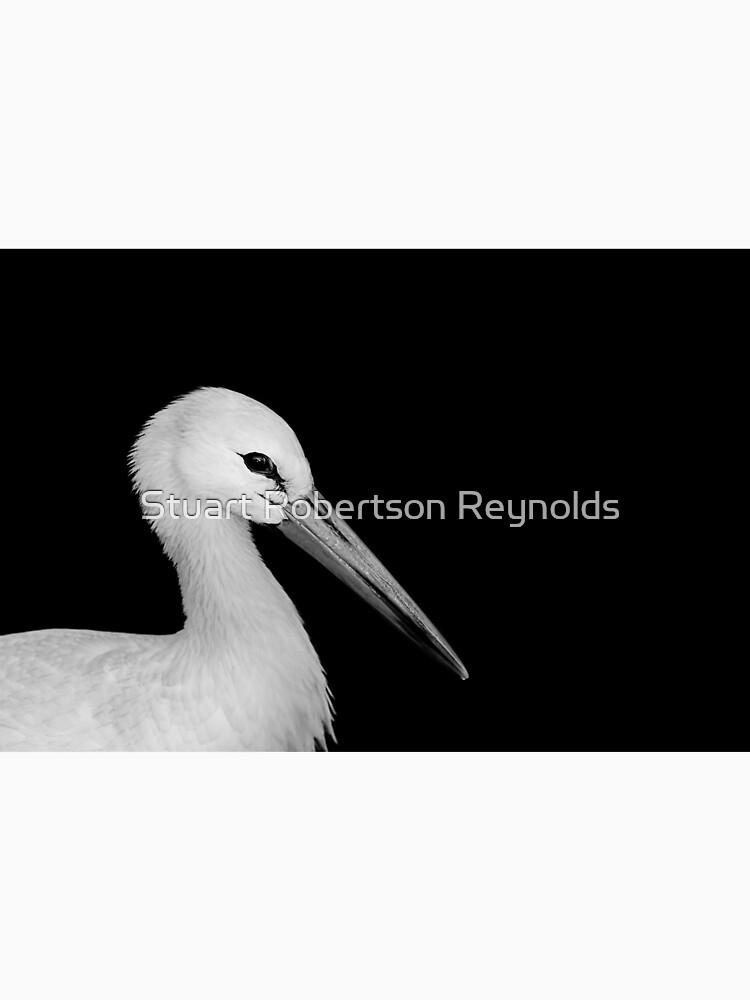 White Stork by Sparky2000