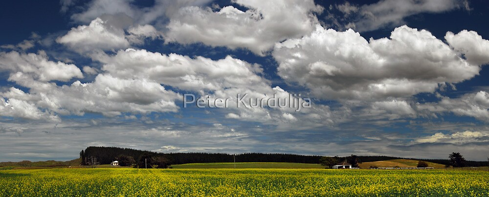 Spring Is … When All the Flowers Join the Choir  by Peter Kurdulija