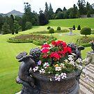 Powers Court nr Glendalough, Wicklow Mtns, Ireland by BronReid