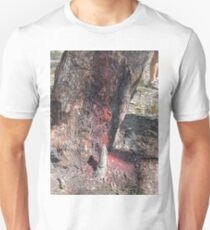 Corymbia Terminalis, Desert Bloodwood and termite nest Unisex T-Shirt