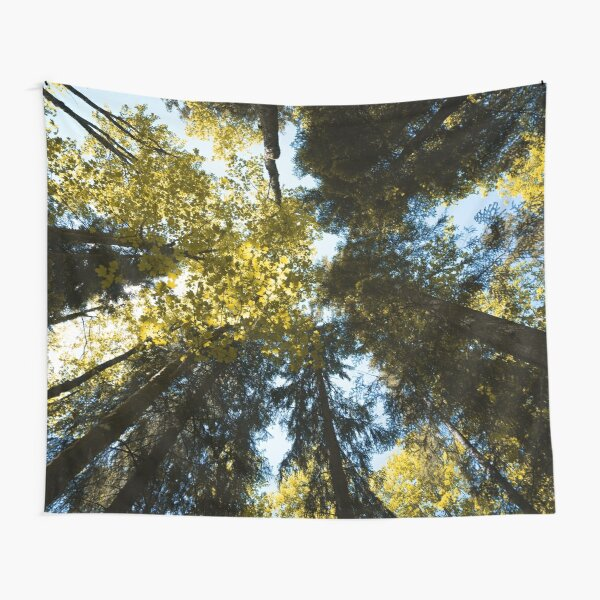 Canopy of Tall Trees Tapestry