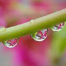 It's raining by MaanKind