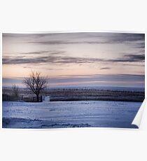 Snowy Prairie Landscape Poster