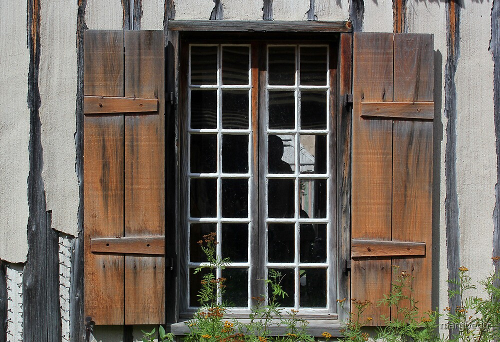 Brown Window Closeup by marybedy