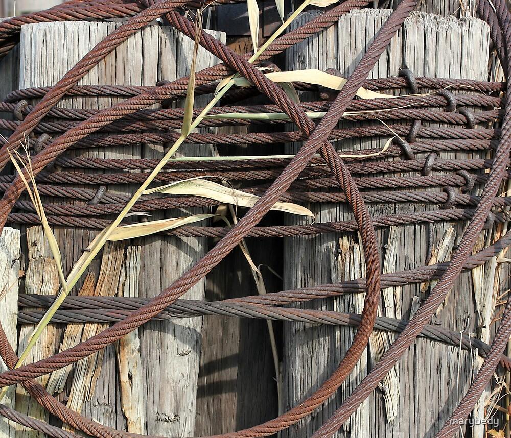 Loop de Loop by marybedy