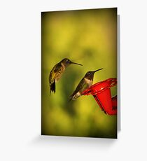 Preparing For Annual Migration Greeting Card