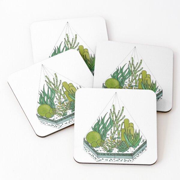 Cactus terrarium Coasters (Set of 4)