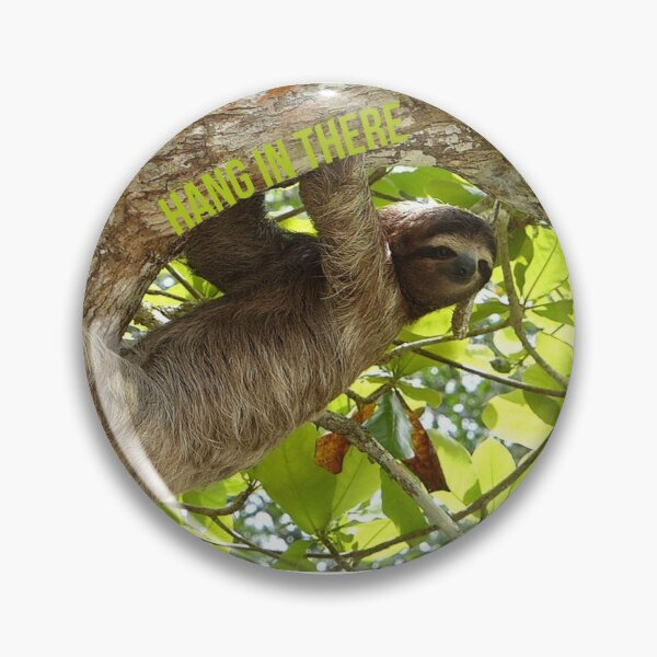 Hang In There Sloth Pin